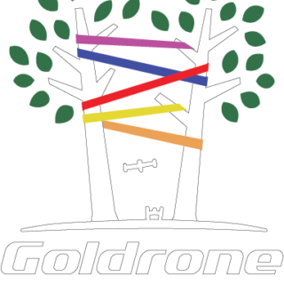 https://www.filenvol.com/wp-content/uploads/2018/12/logo_goldrone_valid4_COLOR_White-320x320.png
